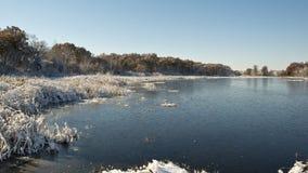 Frozen Wetland Royalty Free Stock Photos