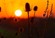 Frühlings-Sonnenuntergang über Shortstown lizenzfreie stockbilder