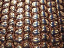 främmande kaviar Arkivbilder