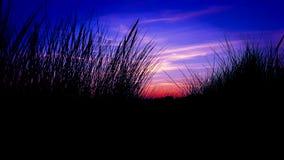 främmande solnedgång royaltyfria foton