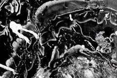Främmande varelseattack i utrymme Fotografering för Bildbyråer