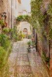 Främre sikt av blommagatan i Spello italy royaltyfria bilder