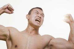 Främre sikt av den shirtless, ilskna rytande unga mannen som böjer hans muskler med lyftta armar och bort ser royaltyfri fotografi