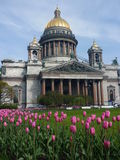 Främre sikt av domkyrkan för St. Isaac \ 's-, St. Peterburg på våren Arkivbilder