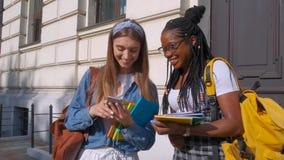 Främre sikt av två härliga studenter av afrikansk och europeisk nedstigning som tillsammans står Kvinnor studerar tillsammans i a lager videofilmer