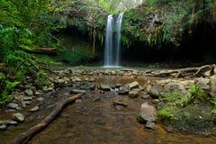 Främre sikt av twinfalls på norrsidan av Maui Hawaii Fotografering för Bildbyråer