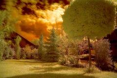 främre trädgård Royaltyfria Foton