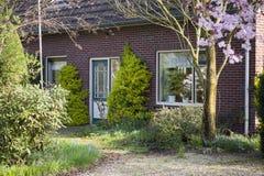 Främre trädgård i Holland Royaltyfri Fotografi