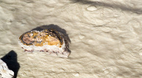 Fräsa den kokande varma thermalen slår samman Lassen vulkaniskt område Royaltyfria Foton