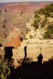 Från kanten som ser in i Grand Canyon Fotografering för Bildbyråer
