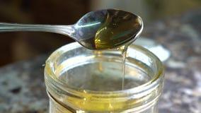 Från krus av honung med en skedskopa honungen stock video
