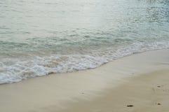 Från Seychellerna härlig strand Arkivbild