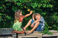 Frère et soeur drôles à l'arbre avec les abricots mûrs photo libre de droits