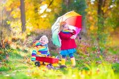 Frère et soeur en parc d'automne Photos libres de droits