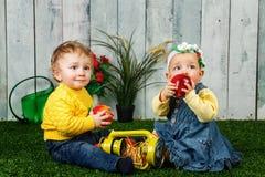 Frère et soeur jouant sur la pelouse image stock