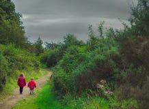Frère et soeur sur une promenade Image stock