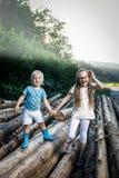 Frère et soeur tenant des mains, marchant en nature Photos stock