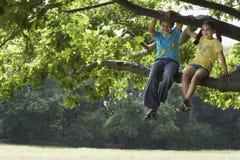 Frère And Sister Relaxing sur la branche d'arbre Image stock