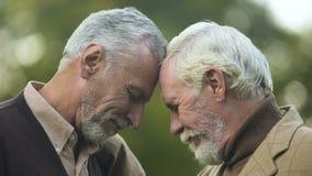 Frères âgés touchant des têtes, connexion de famille, appui d'amitié, ami clips vidéos