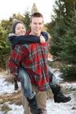 Frères ayant l'amusement à une ferme d'arbre de Noël Photographie stock libre de droits