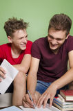 Frères ayant l'amusement tout en étudiant ensemble Photographie stock libre de droits