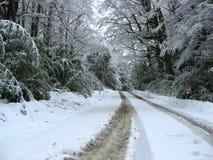 Frío de It´s hacia fuera allí Imagen de archivo libre de regalías