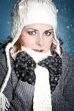 Frío del invierno Imagen de archivo