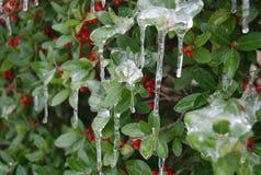 Frío en Tejas Imagenes de archivo