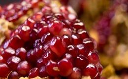 Frö av pomegranate 2 Arkivbild