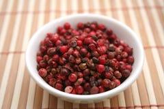 Frö för röd peppar Arkivfoton