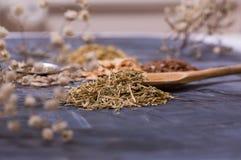 frö och kryddor på tabellen Royaltyfri Fotografi