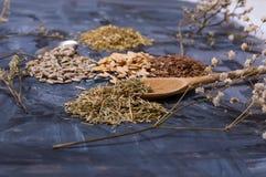 frö och kryddor på tabellen Arkivbilder