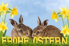 Fröhliche Ostern Lizenzfreie Stockfotografie