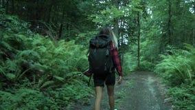 Fröhliches Hippie-Mädchen mit dem farbigem Haar und Rucksack dreht sich herum und Lächeln während die Wanderung im Sommerwald stock video