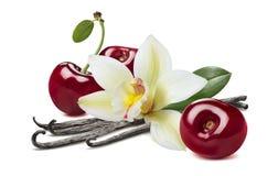 Fröskidor för söt körsbär som och vaniljisoleras på vit bakgrund arkivfoto