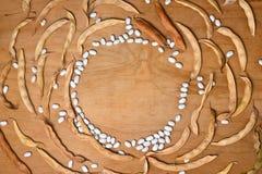 fröskidor för torr böna Royaltyfri Fotografi