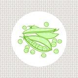 Fröskidor och ärtor, fröärtagräsplan stock illustrationer