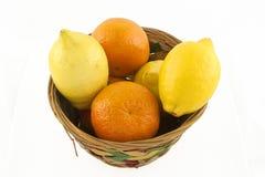 Früchte Stockbild