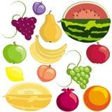 Früchte Stock Abbildung