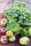 Früchte, aples und Trauben stockfotografie