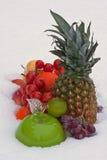 Früchte auf dem Schnee Lizenzfreie Stockbilder