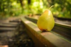 Früchte auf der Flussbank Lizenzfreie Stockbilder