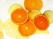 Früchte auf Eis lizenzfreie stockbilder