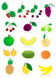 Früchte auf weißem Hintergrund Lizenzfreies Stockbild