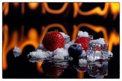Früchte in den Eiswürfeln über Weiß am Feuer im backgraund und im Schnee lizenzfreie stockfotos