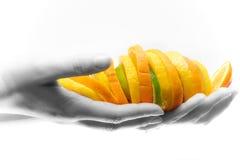 Früchte in den Händen Stockfoto