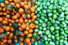Früchte in den klaren Farben - Grün und Orange Stockfotos