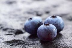Früchte der Blaubeere (NordHighbush Blaubeere) Lizenzfreie Stockfotos