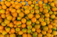 Früchte der japanischen Orange oder des cumquat stockfotografie