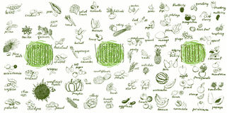 Früchte, Gemüse und superfoods Sammlung Stockbild